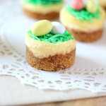 Mini Easter Cheesecakes ~ www.mykitchencraze.com