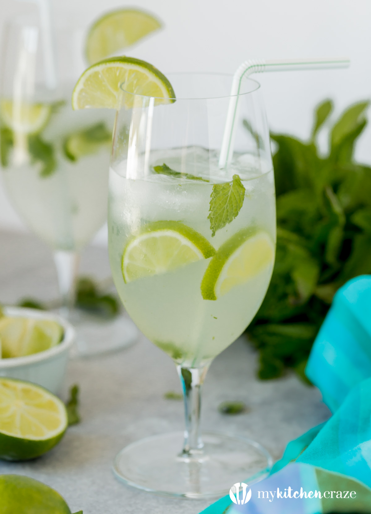 Easy Mojito Cocktail ~ Perfect drink for the summer months and only takes 6 ingredients to make. What drink could be better than that?